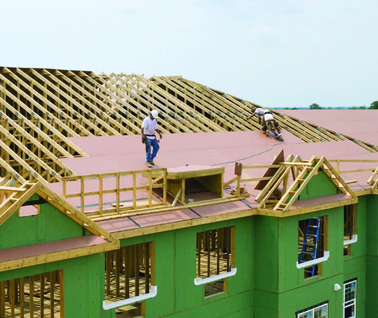 Structural Wood Systems : Mitigating risk with high performance structural wood